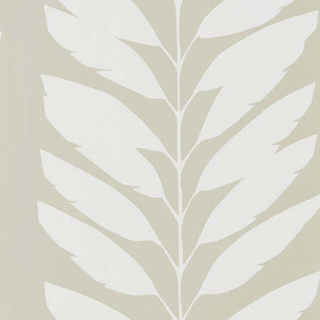 Tapeta 111312 Scion- Malva