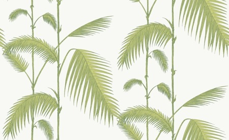 Tapeta 95/1009 Cole & Son - Palm