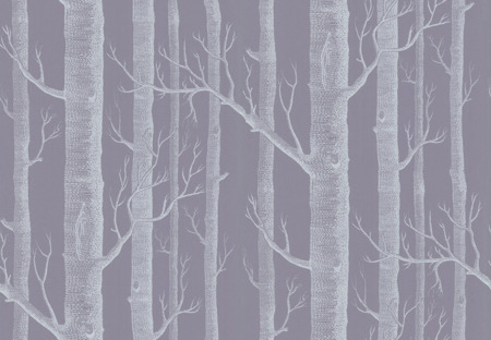 Tapeta  Cole&Son The Contemporary Collection - Woods 69/12151